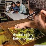 Acarología y entomología