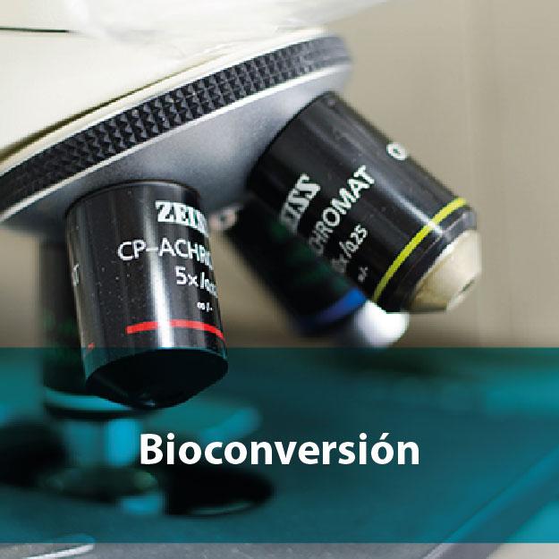 Bioconversión