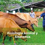Fisiología animal y anatomía