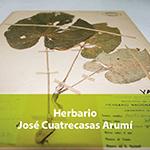 Herbario José Cuatrescas Arumí