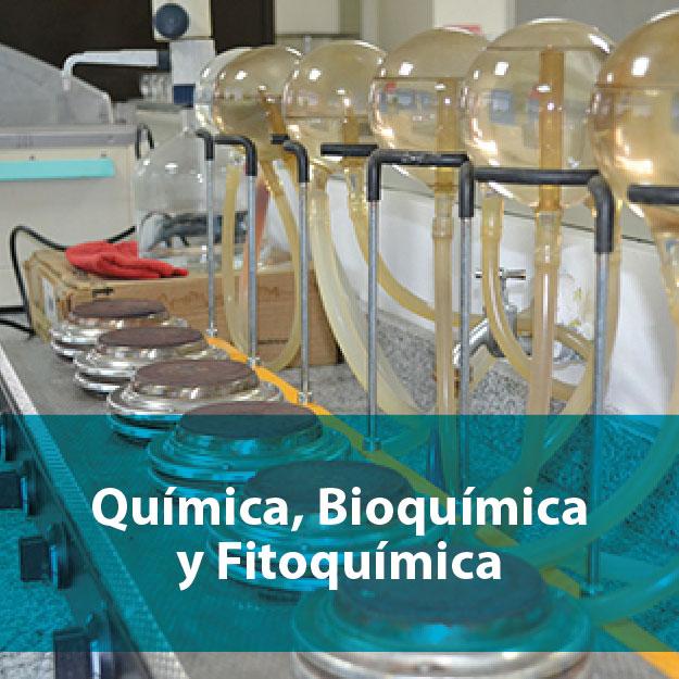 Química, bioquímica y fotoquímica