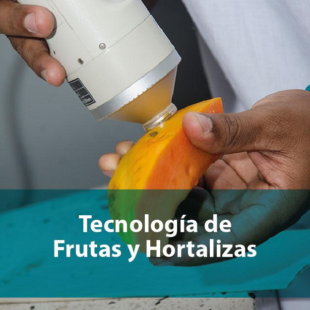 Tecnología de frutas y hortalizas